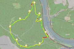 Binger Stadtwald (Openstreetmap)