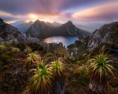 Radiance (Dylan Toh) Tags: lakeoberon southwestnationalpark wilderness australia hike hiking tasmania trekking westernarthurs