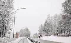 winter is coming (MargitHylland) Tags: gjøvik winter oppland spring confused norge norway norwegen schnee snø white kvit