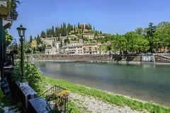 Verona Castel San Pietro (gianmaria.colognese) Tags: verona fiume adige collina castello città paesaggio verde