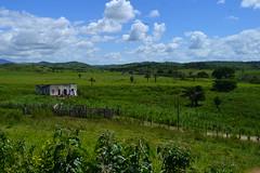 006 paisagem (agnaldo.severo) Tags: paisagem nuvem verde azul estrada casa árvore