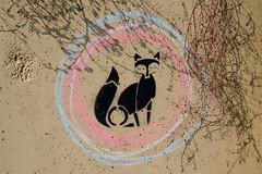Fux sein fetzt !!! (rainbowcave) Tags: fox circle fuchs kreis kreide chalk streetart