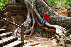 Resting on a banyan tree root, Angkor Wat, Siem Reap, Cambodia (adamba100) Tags: asia asian china chinese korea korean mongolia mongolian vietnam vietnamese thai beijing town city view landscape cityscape street life style people human person man men woman women male female girl boy child children kid interesting portrait innocent cute charm pretty beauty beautiful innocence face headshot pure purity tourism sightseeing tourist travel trip light color colour outdoor traditional cambodia cambodian phnom penh sony a6300 18105 siem reap pattaya bangkok colonnade architecture column ruins ancient stonework