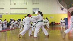 stefanou_seminario_aprilios_2017_160