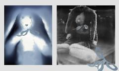 bunny (bunchadogs & susan [off---heartsick]) Tags: bunny lumenprint polaroidsx70 impossibleprojectbwfilm diptych