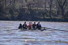 ABS_0126 (TonyD800) Tags: steveneczypor regatta crew harritoncrew copperriver rowing cooperriver