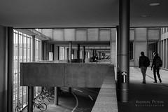 DSC09813_s (AndiP66) Tags: architecture architektur basel schweiz switzerland petermerian gebäude building blackandwhite schwarzweiss schwarz weiss black white monochrome sony sonyalpha 7markii 7ii 7m2 a7ii alpha ilce7m2 sonyfe28–70mmf35–56oss fe 28–70mm f35–56 sel2870 emount kitlens andreaspeters