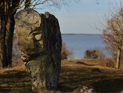 Standing stone (J. Roseen) Tags: stone sten limestone kalksten hornborgarsjön eos7dmkii