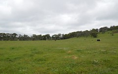 . Ryanda Creek Road, Ben Lomond NSW