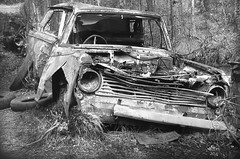 I skogen (Ken-Zan) Tags: skrotbil car forest bw scanned kenzan ljunghav