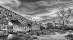 La ribera B&N (arribamarcos) Tags: laribera puenteromano riotormes salamanca castillayleon españa blancoynegro bn monocromo