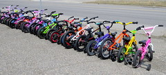 Pick a colour! (diffuse) Tags: bicycle small trainingwheels colourful 117 locked