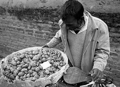 Pentax 645n Nepal HP5+ waiting for instax s (shakmati) Tags: ilford film hp5 ภาพเหมือน slr filma portra 肖像 ritratti portrét bild porträt портрет retrato portrait blanc blanco bw monochrome black white shiro negro nero street travel nepal kathmandu people world pentax 645 645n 45mm medium moyen 120