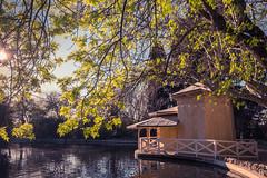 Parque del Capricho (Carlos Peña Fernandez) Tags: parque capricho alameda osuna madrid españa spain fujifilm xt1 fujinon 16mm