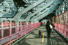 Williamsburg Bridge (zerokhmer) Tags: nikon dx d300 dog dogs 35mm 3518 35mm18 nikkor35mm18 f18 f18g afs newyork williamsburg bridge brooklyn