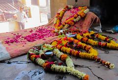 IMG_27257 (Manveer Jarosz) Tags: banaras benares bharat hindu hindustan india kashi manikarnikaghat uttarpradesh varanasi death flowers garland garlands inside pilgrimage pink ritual room sacred