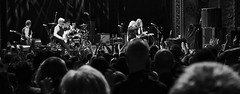 63+469: Patti Smith in concert, Sydney, 09/04/17 (geemuses) Tags: pattismith punk rockmusic music rockandroll rocknroll horses album lp performance entertainment show gig statetheatre sydney nsw australia lennykaye tonyshanahan audience