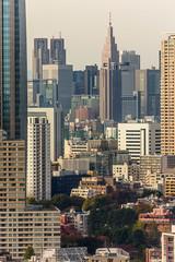 IMG_2664 (Evgeny Gorodetskiy) Tags: birdseye autumn city overlook skyscrapper tokyo japan travel minatoku tōkyōto япония jp