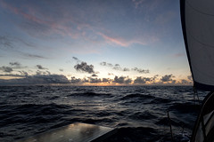 Just another evening at sea