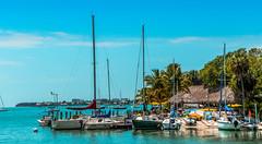 In Lower Matecumbe Key, Miami Fl. ©® (The Sergeant AGS (A city guy)) Tags: walking walkingaround waterways vacakey miamifl miamibeaches sailboats yacht yachtride navigating blue seashore sea seascape outdoors