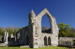 Still Standing (Sundornvic) Tags: ruins abbey haughmondabbey stone destruction broken arches walls sun shine spring sunshine sky blue countryside heritage