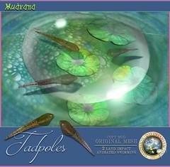 DDDF MUDRANA  Tadpoles (*MANDRAGORA* & Lilith's Den) Tags: mudrana dandeliondaydreamsfactory lilithsden fantavatar moonstruck oblivion lunabarak alruniaahn fantasyfaire 2017