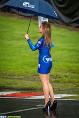 Ollie Jackson Grid Girl - BTCC 2014 @ Oulton Park (LeemoExEmo) Tags: park uk girl car june race grid championship promo nikon 7 8 sigma pit racing lee anthony british circuit touring motorsport btcc 2014 oulton leemoexemo