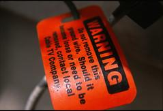 (alienmeatsack) Tags: plants 6 film 35mm lomo lomography cul e6 diopter closeuplens agfactprecisa100 50mmlens mirandasensorex processede6 automiranda