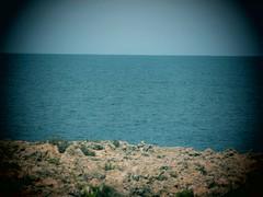rock sea sky (netman007 (Andre` Cutajar)) Tags: flowers sky sun nature chapel malta andre quotes gozo mediterrean cutajar commino