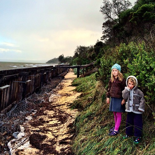 365/183 • we got out of the house in between rainstorms and headed to the secret beach - it was high tide again, so we were ducking and dodging the whole way • #2014_ig_183 #6yo #3yo #somers #morningtonpeninsula #sundayafternoon #winter