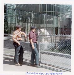 Zoos In the Old Days (Sherlock77 (James)) Tags: people man calgary animal zoo polarbear oldphotos foundphotos