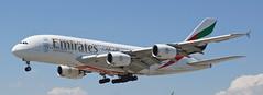 A6-EDY Emirates Airbus A380-800 (Sofie Lasiuk) Tags: toronto ontario canada emirates mississauga yyz 2014 airbusa380 lesterbpearsoninternationalairport sigma1770 cyyz sonya77 a6edy