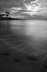 Disappearing footprints (Darryl Renyk Photography) Tags: ocean trees sunset sky tree beach water clouds hawaii nikon waves palm d7000