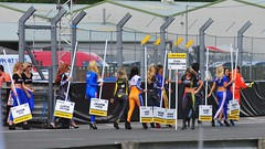 BTCC Oulton Park June 2014 (sab89) Tags: park cars ford girl june vw race honda grid mercedes benz championship track cheshire mg toyota bmw british audi plato touring amg vauxhall btcc dunlop 2014 msa outlon