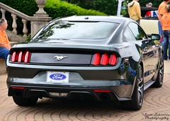 2015 Ford Mustang Prototype (scott597) Tags: park ohio ford grey cincinnati prototype mustang concours 2014 ault 2015