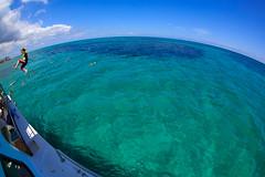 Swimming in the Bahamas. (Ole-Gunnar) Tags: ocean sea summer water canon fun jumping diving fisheye snorkeling caribbean bahamas canon815mm canonimagination