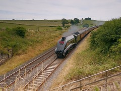 "LNER A4 Class 4-6-2 No 60009 Union of South Africa in charge of ""The Cumbrian Mountain Express"" just south of Langwathby 26th July 2014 (penlea1954) Tags: africa mountain no south union class express a4 charge the lner langwathby cumbrian 462 60009"