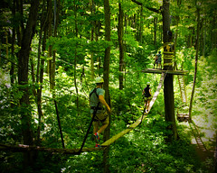 Among The Tree Tops (In Explore) (Rackelh) Tags: treewalking nature adventure trees people sport activity collingwood ontario canada