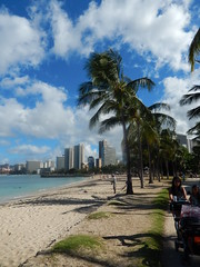 Looking at Waikiki from  Kuhio Beach Park - Hawaii July 2014 (litlesam1) Tags: hawaii waikiki oahu palmtrees july2014 returntohawaiidaytwo2014