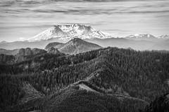 Mt. Saint Helens from Gobbler's Knob (TroyMasonPhotography) Tags: mountain forest volcano hike lakegeorge mountrainiernationalpark backpack fourthofjuly wife 4thofjuly mtrainier mtsthelens mountsainthelens westsideroad mtrainiernationalpark gobblersknob troymason troymasonphotographycom troymasonphotography troytroymasonphotographycom