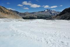 DSC_3444 (aha0301) Tags: landscape jasper glacier brewster jaspernationalpark icefield columbiaicefield d700 afsnikkor2470mmf28g glacieradventure