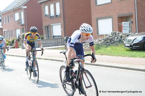 Geel Oosterlo  (65)