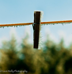 Frozen Peg (broadswordcallingdannyboy) Tags: winter stilllife france ice frozen frost dof bordeaux bluesky f56 peg canoneos elsa francais lightroom washingline canon1ds 70mm aquitaine gironde letitgo canon2470mm francewinter canonllens leonreilly frenchwinter leonreillyphotography copyrightleonreillyphotography thecoldneverbotheredmeanyway frozenpeg
