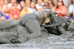 Mud Wrestling _ 301 by lens buddy -