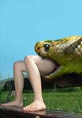 Alicia_Snake5 (tallteeth711) Tags: vore feet fetish legs damsel vorevids shoop snake fishvore toes nylons stockings