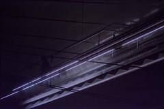 Sin título (8) (idaltu_) Tags: púrpura neón escaleras metro adioses ciudad