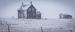 Lonely (maureen.elliott) Tags: cabin structure architecture snow landscape house field rural brucepeninsula ontario springstorm