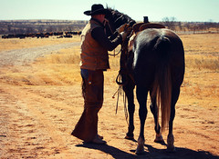 The King of Broken Hearts (It Feels Like Rain) Tags: cliff cowboy westtexas texas true idliketohavethatoneback cattle herd offwiththeherd horse caballo cheval ranchlife cowboyway