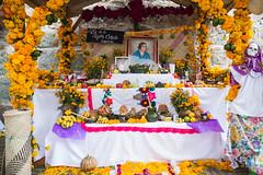 Oaxaca Day of the Dead orange flower shine-2