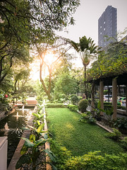 Urban Oasis (SimplySiRi) Tags: tailandia thailandia thaïlande architectural architecture bangkok bkk buildings condominium iphone landscape light mobile oasia outdoor outdoors photo photography rays residence residential simplysiri softtones sun thailand urban view vintage warmtones бангкок таиланд กรุงเทพ ประเทศไทย 泰国
